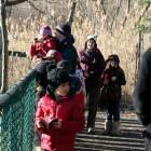 zoo10-pont1