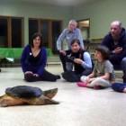 zoo5-tortue1